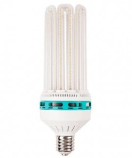 comprar Bombilla LED Solux Floración