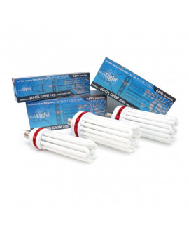 comprar Bombilla Pure Light CFL Grow 6400K