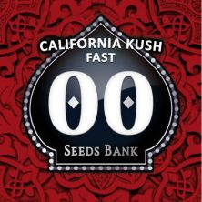 California Kush Fast de 00 Seeds