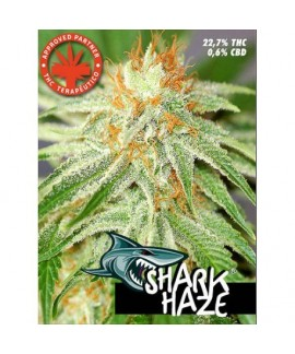 comprar Shark Haze