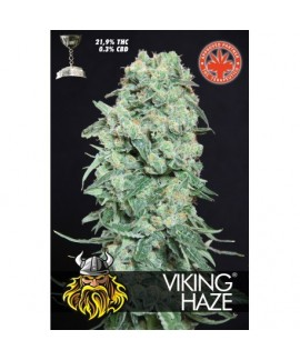 comprar Viking Haze