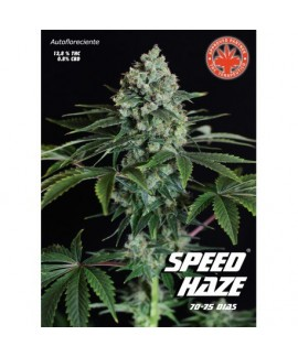 comprar Speed Haze