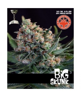comprar Big Skunk de Pure Seeds