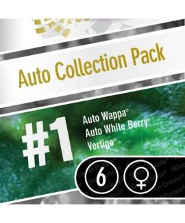 comprar Coleccion Auto 1