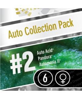 comprar Coleccion Auto 2