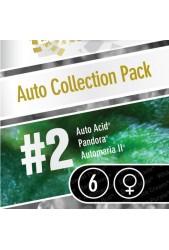 Colección Auto 2 de Paradise Seeds