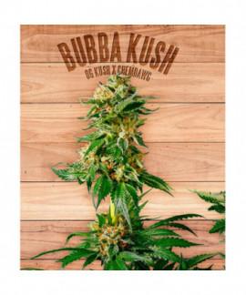 comprar Bubba Kush