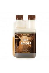 Bio Boost - Canna