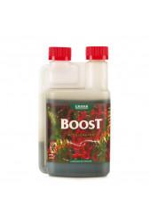 Boost Accelerator - Canna