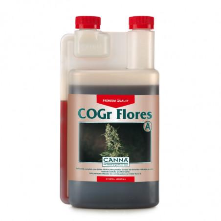 COGr Flores A+B