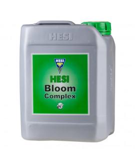 Bloom Complex