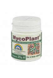 Mycoplant Polvo de Trabe