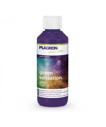 Comprar Green Sensation de Plagron