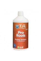 Pro Roots de GHE