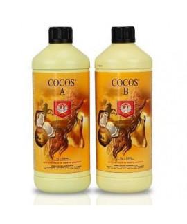 comprar Coco A+B