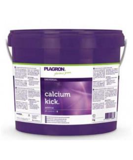 comprar Calcium Kick de Plagron