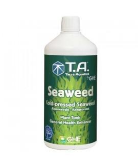 comprar Seaweed de GHE