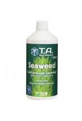 Seaweed de GHE
