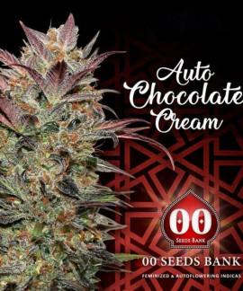 Auto Chocolate Cream