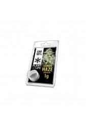 CBD Solid Lemon Haze de Plant of Life