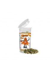 Orange Bud - Flores de CBD 1,5g de Plant of Life