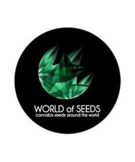Semillas World Of Seeds Feminizadas