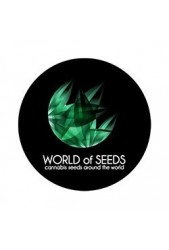 World of seeds ® Semillas de marihuana feminizadas ✔ Baratas ✔