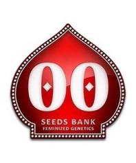 Semillas Autoflorecientes 00 Seeds online