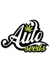 Comprar semillas Auto Seeds Autoflorecientes Baratas
