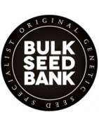 Semillas Bulk Seeds Bank Autoflorecientes
