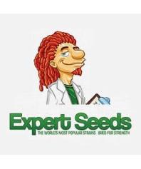 Semillas Autoflorecientes Expert Seeds