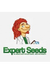 Comprar semillas Expert Seeds autoflorecientes baratas