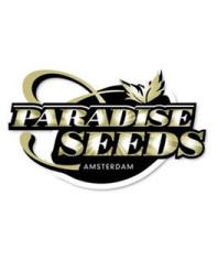 Paradise Seeds Auto