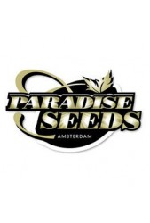 Comprar semillas Paradise Seeds autoflorecientes baratas