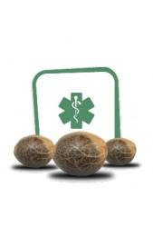 Semillas de Cannabis medicinales CBD ¡Al alcance de tu mano!