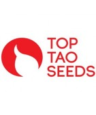 Semillas Autoflorecientes Top Tao Seeds
