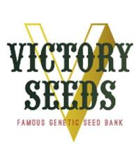 Victory Seeds Auto