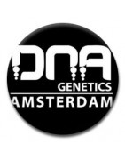 DNA Genetics Regulares