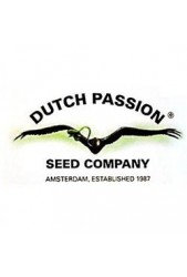Semillas de Dutch Passion regulares ¡Hazte con algunas semillas!