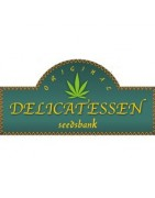 Semillas Original Delicatessen Seeds Regulares