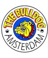 Semillas Regulares The Bulldog Seeds