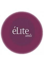 Semillas medicinales CBD Elite Seeds ¡Observa sus beneficios!