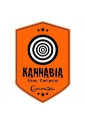 Semillas Kannabia Seeds Company CBD medicinales ¡Cómpralas!