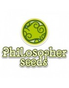 Philosopher Seeds CBD