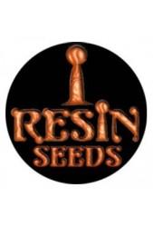 Semillas Resin Seeds medicinales CBD ¡Super baratas!