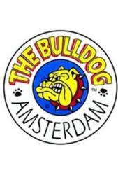 Semillas medicinales The Bulldog Seed CBD ¿Las vas a dejar escapar?