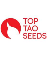 Top Tao Seeds CBD
