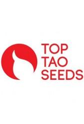 Semillas CBD medicinales Top Tao Seeds ¡Las que estabas esperando!
