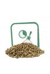 Comprar Semillas Autoflorecientes a Granel Baratas