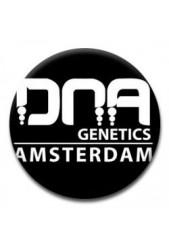 Semillas Dna Genetics ® | Feminizadas ✓ +100 variedades